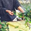 『花と遊ぼう!』フラワーアレンジ ワークショップ